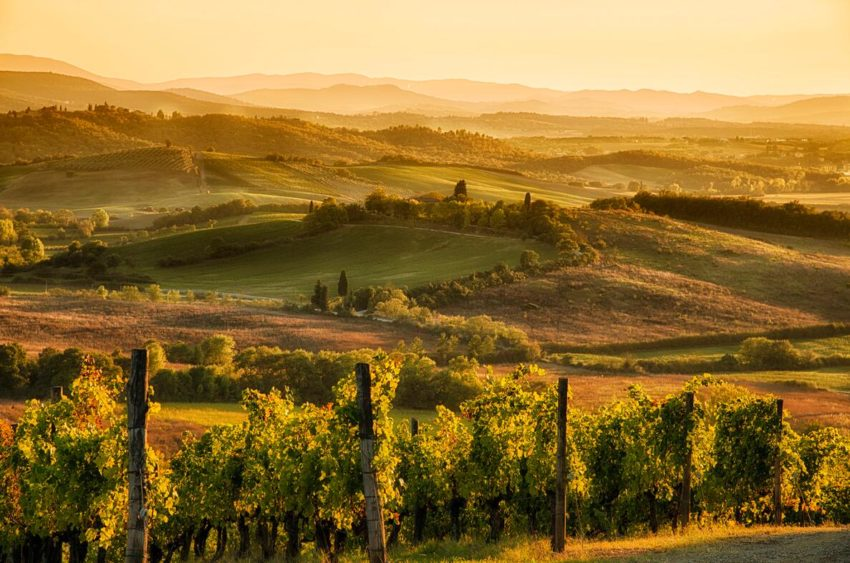 Landscape in Tuscany , Western Italy