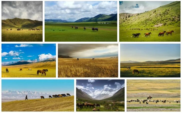 Central Asian steppe country