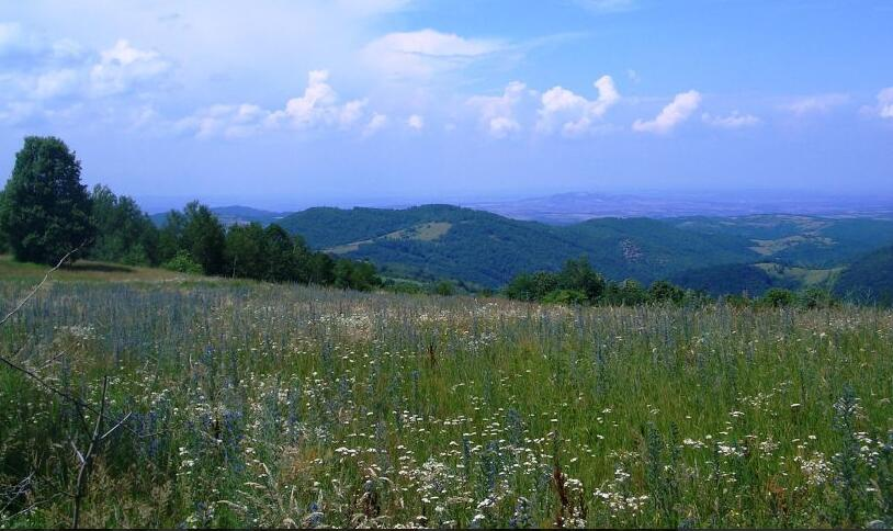 Serbia Šumadija region